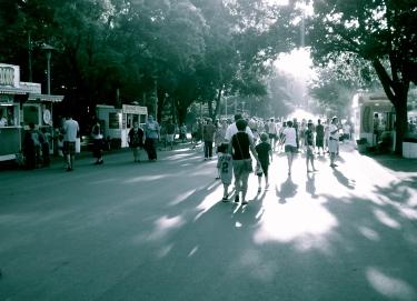 Summer 2011 slips away.